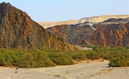 Egypt's Ministry of Environment Launches Campaign to Clean Up Wadi El Gemal National Park