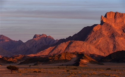 Hike Sinai's Mountains and Learn to Live Like a Bedouin - From Your Phone Screen