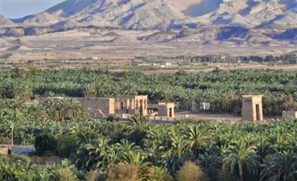 Egypt to Implement Project to Populate New Valley Governorate