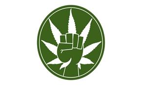 Weed Not War