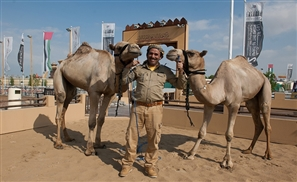 Travelling the World... on a Camel