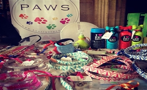 The Boutique Paws: Your Pet's Ultimate Shopping Destination