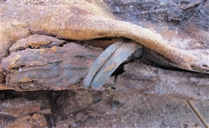 History Mystery: A Million Mummies Unearthed in Egypt