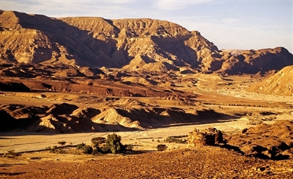 A Massive EGP 100 Billion Construction Project to Take Place in North Sinai