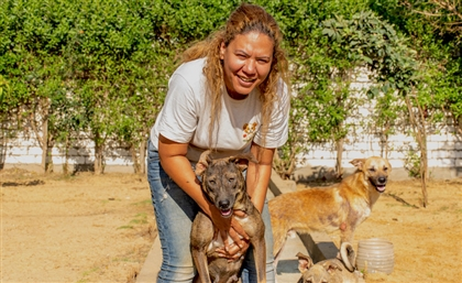 Meet the Egyptian Woman Who Left Her Whole World Behind to Save 150 Dogs