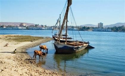 Egypt to Receive $31.5 Million Grant to Prevent Erosion of Nile Delta
