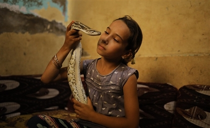 A Day in the Life of an Egyptian Snake Wrangler