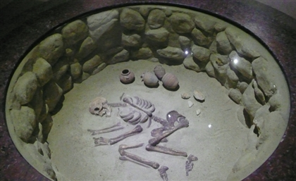 World's Second Oldest Skeleton to Be Displayed at the Egyptian Museum
