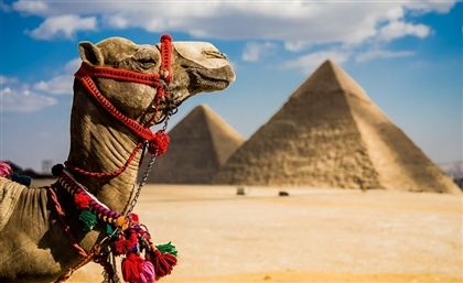 Egypt to Sign Agreement with CNN to Promote Tourism