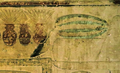 Were Ancient Egyptians the First to Domesticate Wild Watermelons?