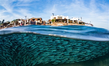Dahab Tops National Geographic's List of Best Beaches in the Middle East 2019