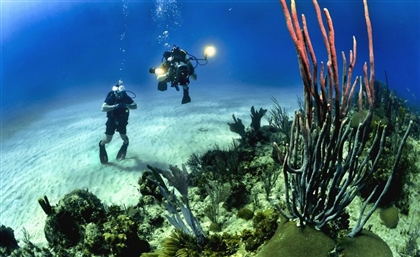 Egypt to Establish Middle East's First Marine Research and Technology Centre