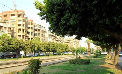 500-Plus Trees to Be Cut Down in Heliopolis to Make Way for New Bridge