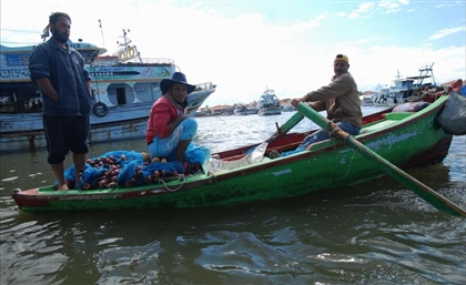 Four Missing Fishermen Found on Red Sea Island After A Week