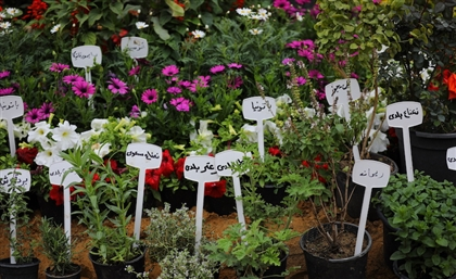 Orman's Flower Exhibition is Back for its 87th Edition