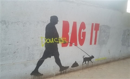 Zamalek Dog Walkers, We Have A Message For You