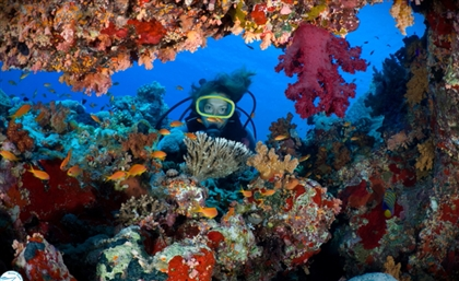 Red Sea Diving Safari Now Offers Virtual Tours of its Ecotourism Villages