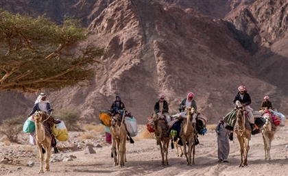 'Live Tribal' With This Wild Guanabana Hike Along the Sinai Trail