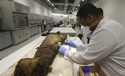 First Session of Mummy Preservation Course Begins in Bahariya