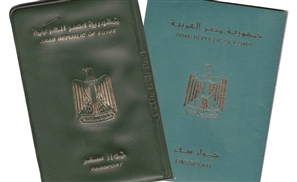 Ministry Suggests Revoking Citizenship of 'Traitors' Abroad