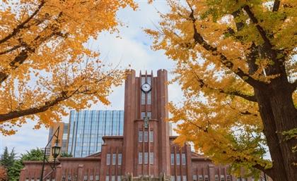 Egypt Offers Scholarships for Teachers to Train in Japan