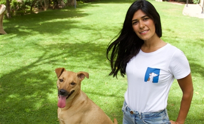 The Faab Space to Hold Yoga Fundraiser to Save Stray Dogs