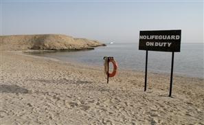 Shark Attack Kills German Tourist in Marsa Alam
