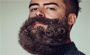Video: Your Beard is Full of Shit
