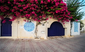 Welcome to Djerbahood