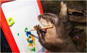 You Otter Be Ashamed!