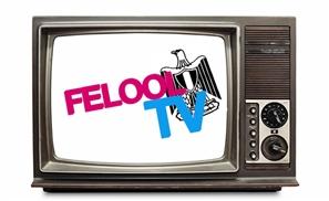 Felool TV