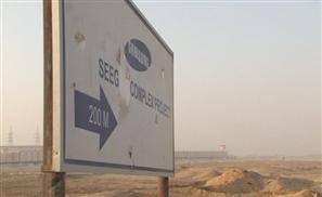Samsung Growing in Beni Suef