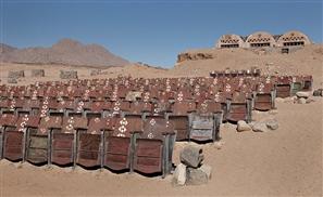 Sinai's Secret Cinema