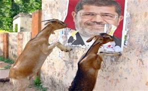 Morsi Rejects Prison Food