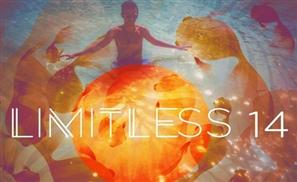 Sebzz: Limitless 14