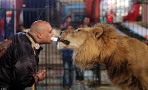 Shocking Egyptian Circus Act Goes Viral