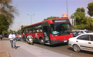 Egypt's Sugar Daddy to Supply 600 Buses