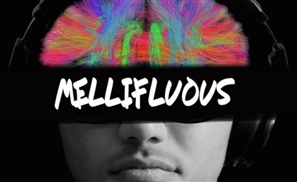 Mellifluous: Reviewing N/A Music Group's Latest Mixtape By Mandou