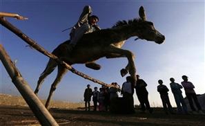 Egyptian Teen and Donkey Defy All Odds