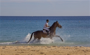 Sahl Hasheesh Will Be Hosting Its First International Equestrian Championship This April