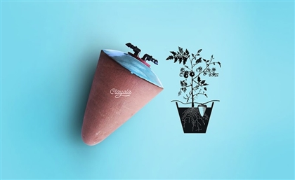 Clayola: The Brilliant Egyptian Invention that Keeps Your Plants Watered for Months