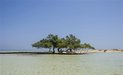 Marsa Alam Beach Was Just Ranked One of the Top 10 Beaches in the Middle East
