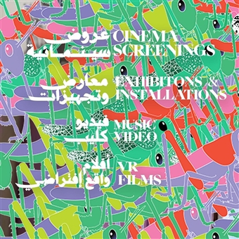 Cairo Video Festival 10th Edition