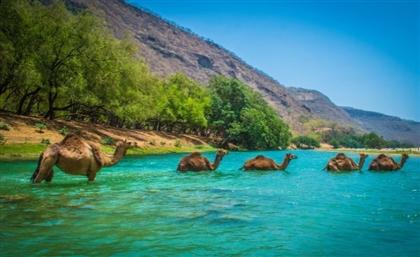 Hawana Salalah is an Omani Paradise on the Indian Ocean