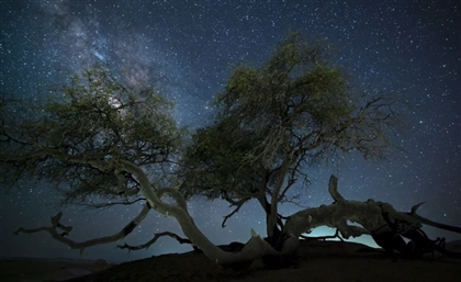 Koree Films' Newest Project Showcases Egypt's Natural Splendours