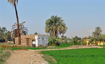 Egypt to Establish 1,000 Mobile Stations in Rural Villages